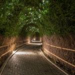 Sentiero degli elfi 1